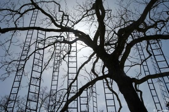 L'arbre Aux Echelles / Ladders Tree Garden Ideas Recycled Art