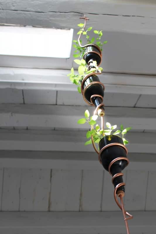 DIY: Wine bottles hanging herb garden | Recyclart