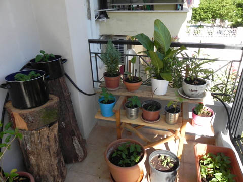 1 Reusing materials for my plants at balcony in wood diy  with Garden Balcony