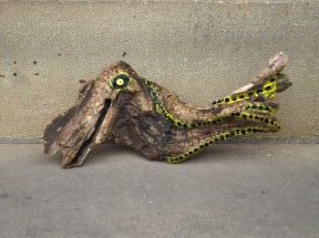 Driftwood Creatures