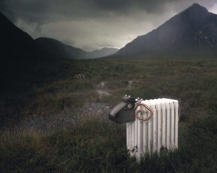 Radiator Sheep