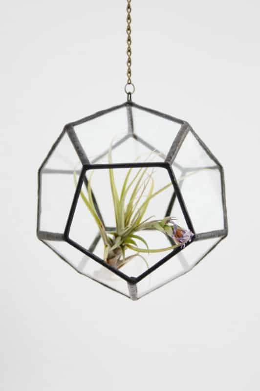 Recycled glass Terrarium in glass accessories  with terrarium Recycled Glass