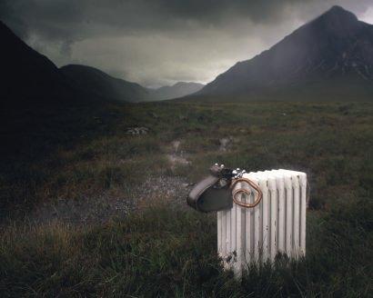 Radiator Sheep