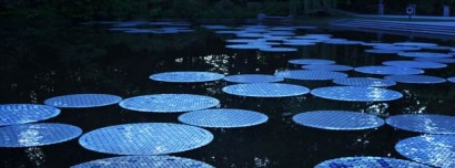 Upcycled CDs : Water Lilies