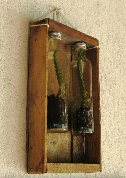 Plants+Glass Bottles