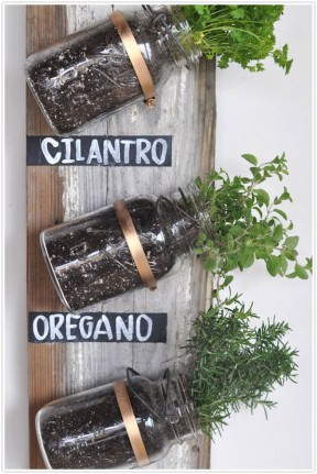 Mason Jar Herb Garden