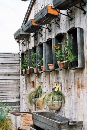 Lovely way to use old crates and lavabos