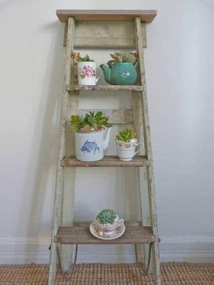 Succulent Garden from an Old Ladder Do-It-Yourself Ideas Garden Ideas