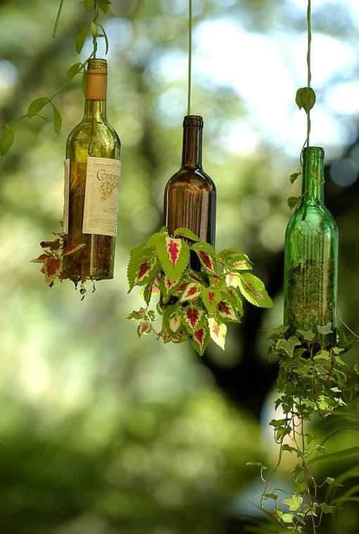 planter-wine-bottle