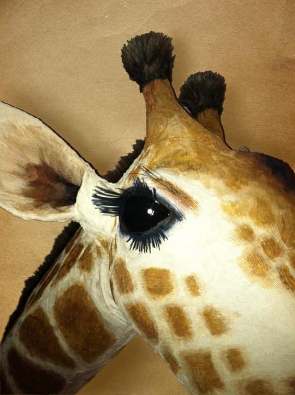 Giraffe03-600px