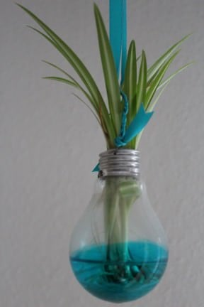 Recycled bulb