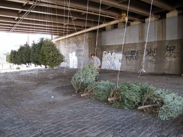 Recycled Christmas Tree Installation (2013 Version) in wood art  with installation Christmas Art