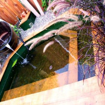 Wood frame back-yard pond