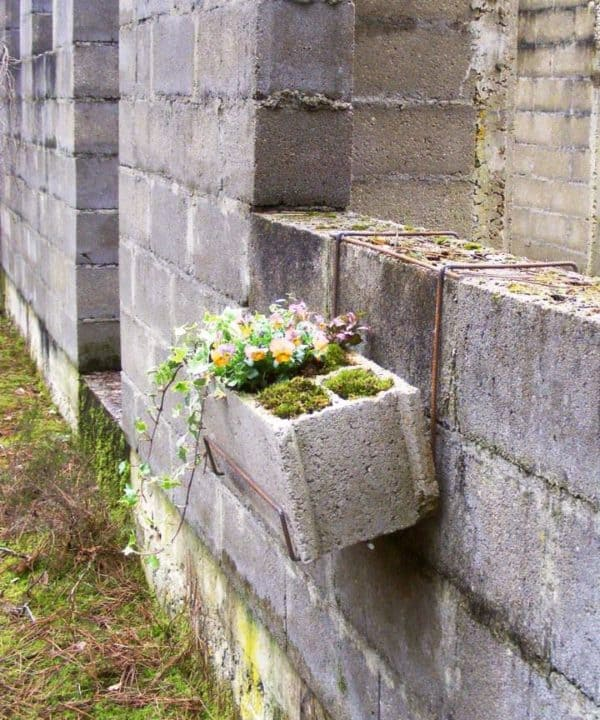 Cinderblock planter in garden 2  with Garden Flowers