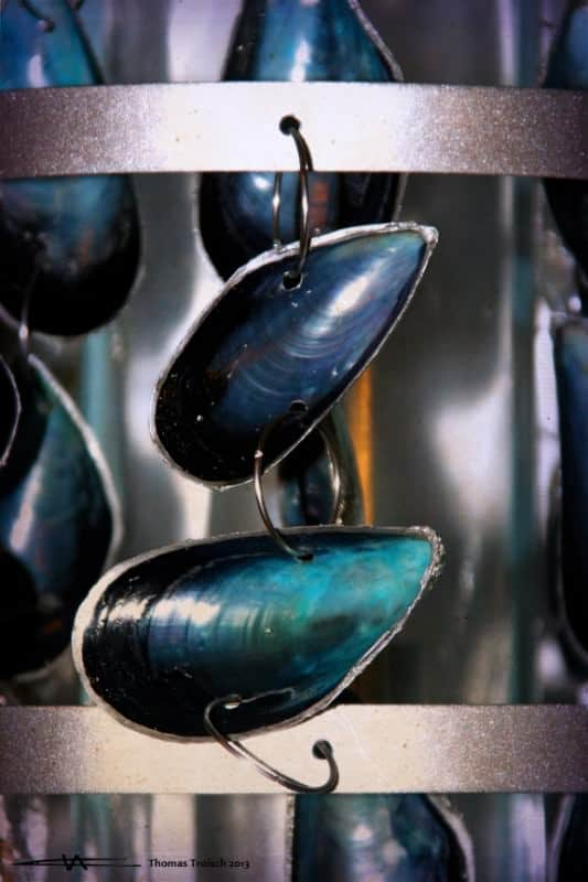 Pacific Blue Mussel Sconces Lamps & Lights Recycled Art Wood & Organic