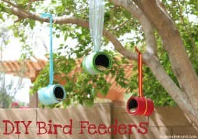 DIY Bird Feeders