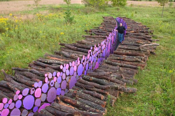 Wood pathway in wood art  with Wood paint Land Art