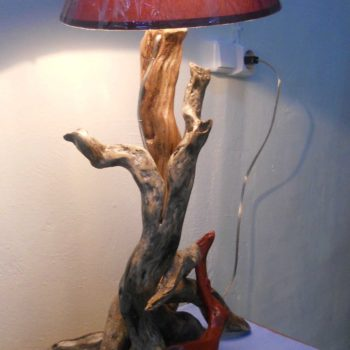 Driftwood art by vastri