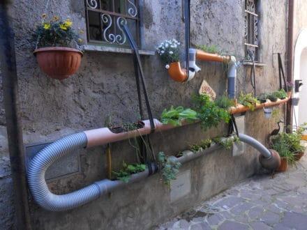 L'Ortubo: l'orto in un tubo!