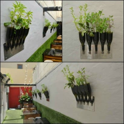 Herbs planter from Wine Bottle