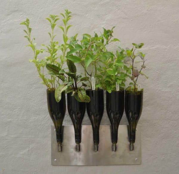 Herbs planter from Wine Bottle Garden Ideas