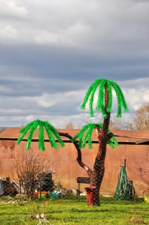 Palm tree made ​​from recycled plastic bottles Lithuania