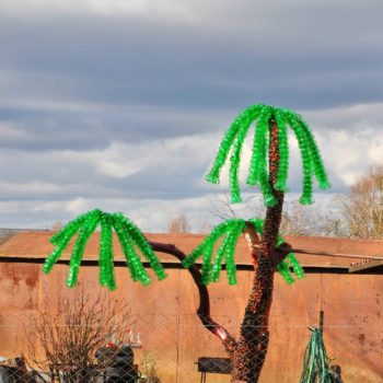Palm tree made from recycled plastic bottles Lithuania
