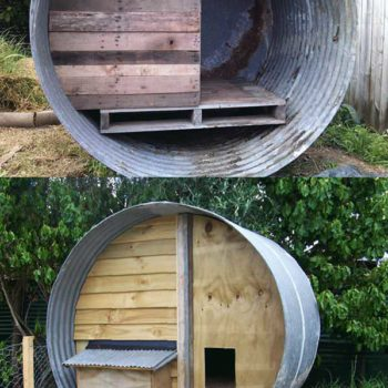Water tank + Pallets = chicken coop