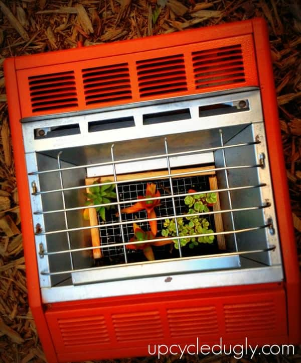 DIY: Ugly Wall Heater Upcycled Into Succulent Planter in garden 2 diy  with Upcycled tutorial Planter DIY