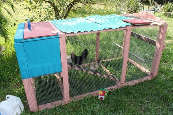 Chicken coops in garden 2 diy  with Recycled