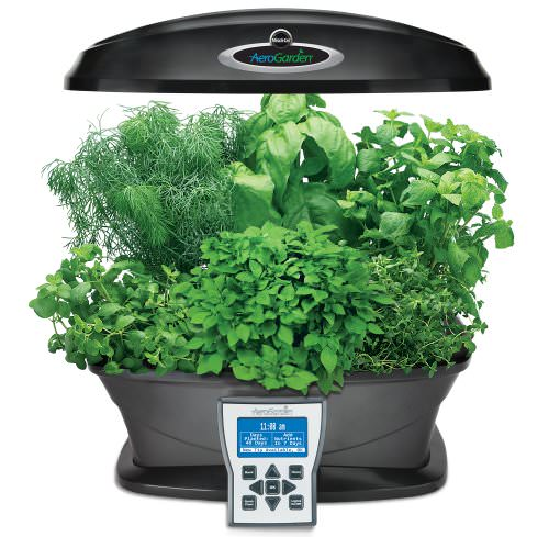 vinyl planters home depot with Miracle Gro Aerogarden Ultra With Gourmet Herb Seed Pod Kit on Florida Landscape Design Ideas University Of South Florida Athletics together with Lawn Edging Ideas Lowes besides 203018471 besides 3 furthermore 925452.