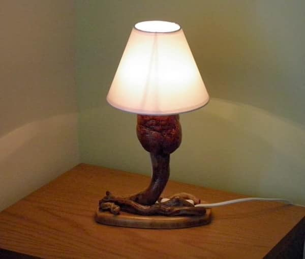 My mushroom lamp in wood lights  with Wood Lamp driftwood