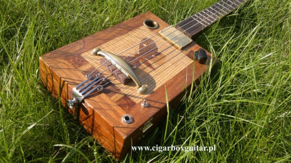 Cigar box guitar Do-It-Yourself Ideas