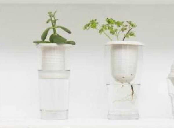 Repurposed Glassware into Tiny Greenhouses Garden Ideas