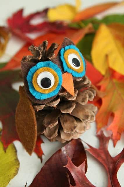 pinecone-owl