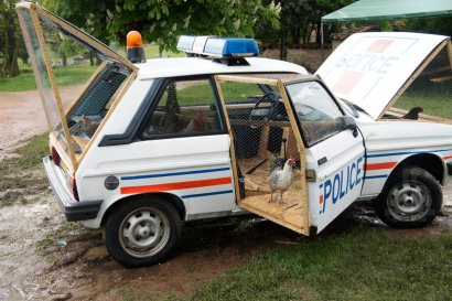 Benedetto Bufalino repurposes an old police car into a modern chicken coop
