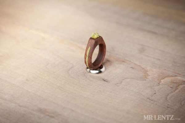 Eco Friendly Moss & Grass Jewelry in wood jewelry  with Wood rings Necklace Jewelry grass eco friendly