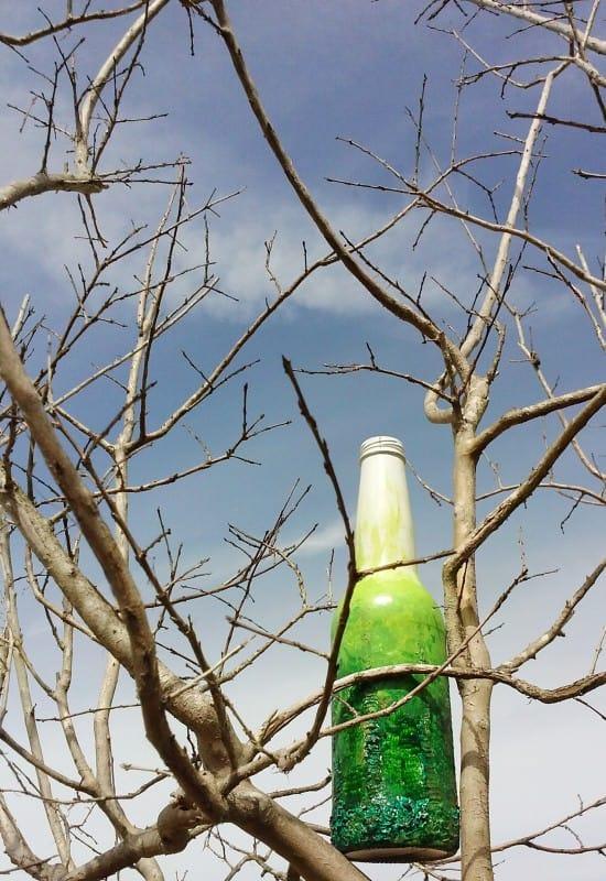 bottle-3-9