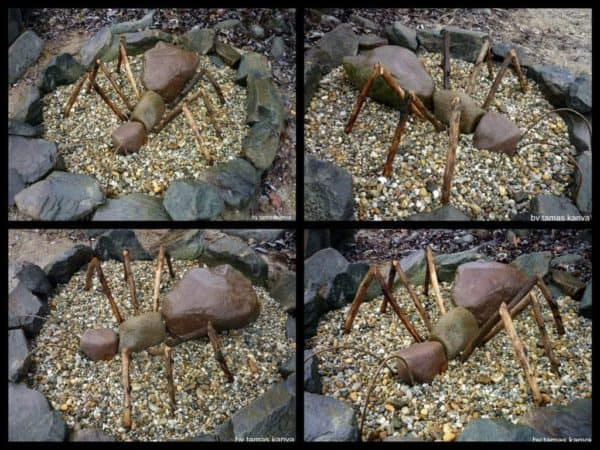 land_art_stone_ant_in_hungary_by_tamas_kanya_by_tom_tom1969-d72bq0n