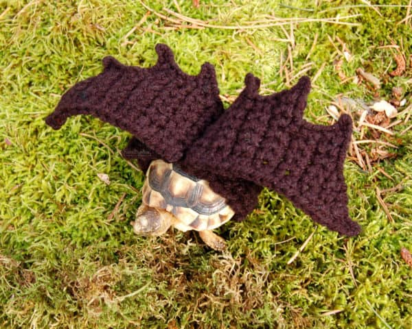 Crocheted Tortoise Cozy in accessories  with fashion Crochet Animals