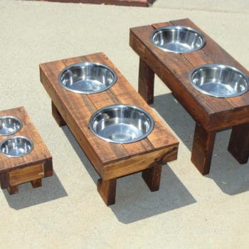 Raised dog food feeders