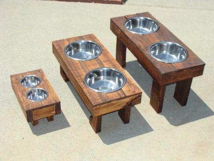 Raised dog food feeders
