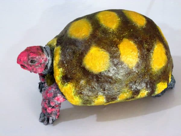 Recycled Egg  Boxes into an Amazing Turtle Recycled Art Recycled Cardboard Recycled Packaging