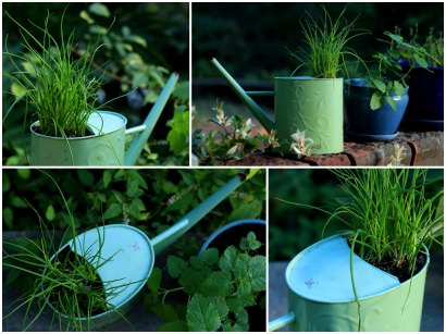 How to create a planter pot from an old watering can