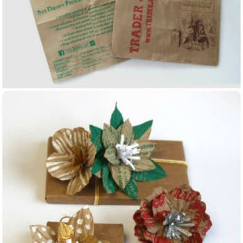Unique Gift Wrap With Grocery Bags