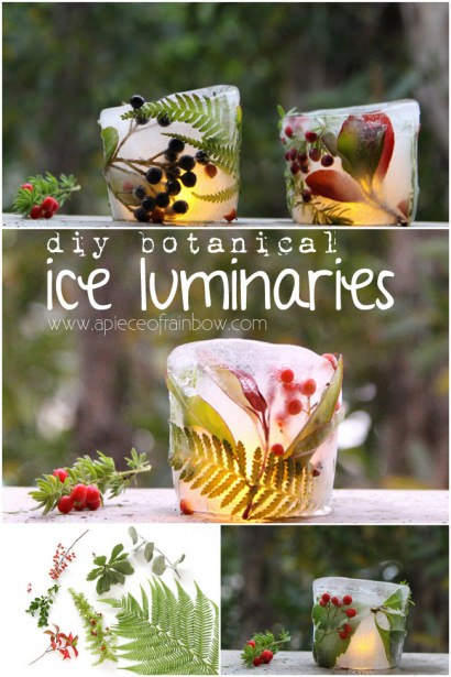 Make Botanical Ice Luminaries