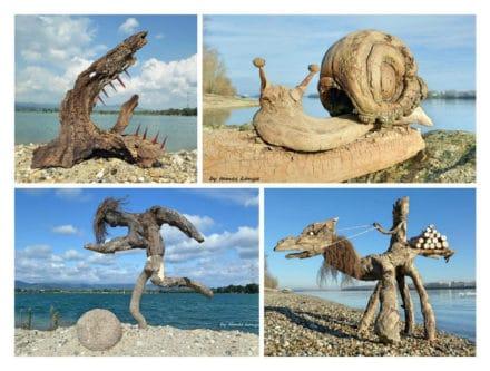 Driftwood Art in Hungary by Tamas Kanya
