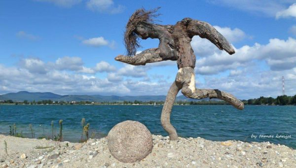 Driftwood Art in Hungary by Tamas Kanya Recycled Art Wood & Organic
