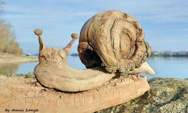Driftwood Art in Hungary by Tamas Kanya Recycled Art Wood & Organic