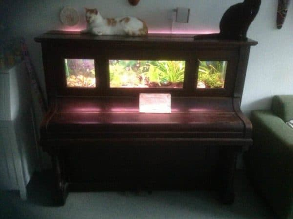 Old Piano Upcycled Into Aquarium Accessories